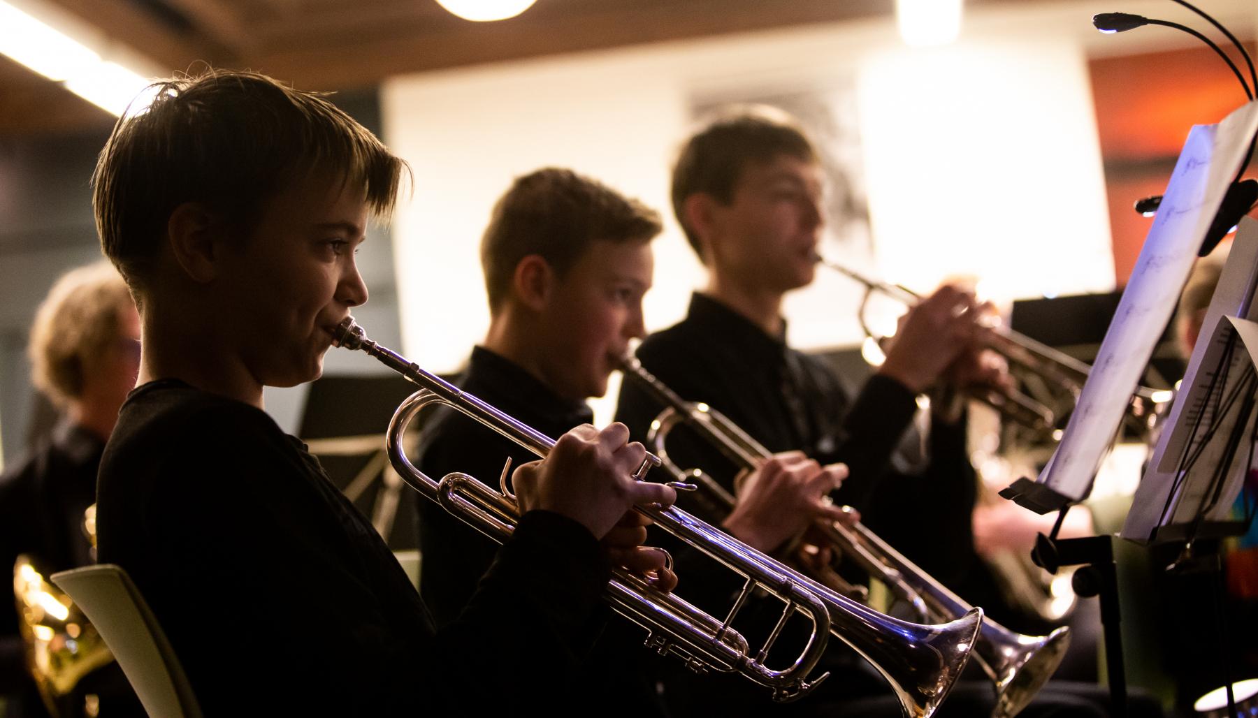 Nieuwjaarsconcert St Gregorius-14